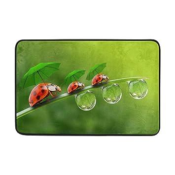 ALAZA Hipster Ladybug con gotas de lluvia en paraguas verde Felpudo Alfombrilla de interior al aire