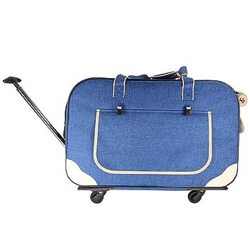 2806223a8cfd Amazon.com : LCLZ Pet Luggage Hidden Air Box Silent Wheel Trolley ...