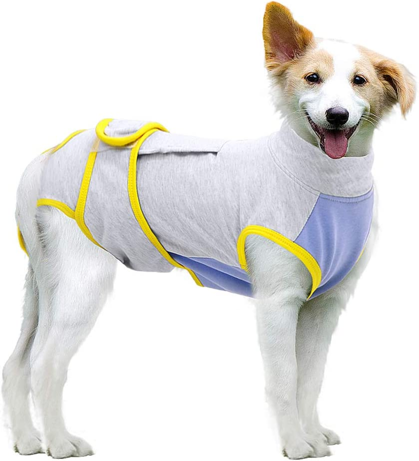 MAZORT Recovery Suit for Dogs Cats After Surgery, Recovery Shirt for Male Female Dog Abdominal Wounds Bandages Cone E-Collar Alternative