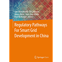 Regulatory Pathways For Smart Grid Development in China (English Edition)