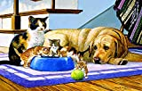 What's a Dog to Do? 100 Piece Jigsaw Puzzle by SunsOut