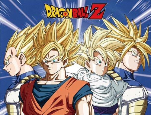 GE Animation 57785 Dragon Ball Z Super Saiyan Warriors Throw Blanket (Super Warrior compare prices)
