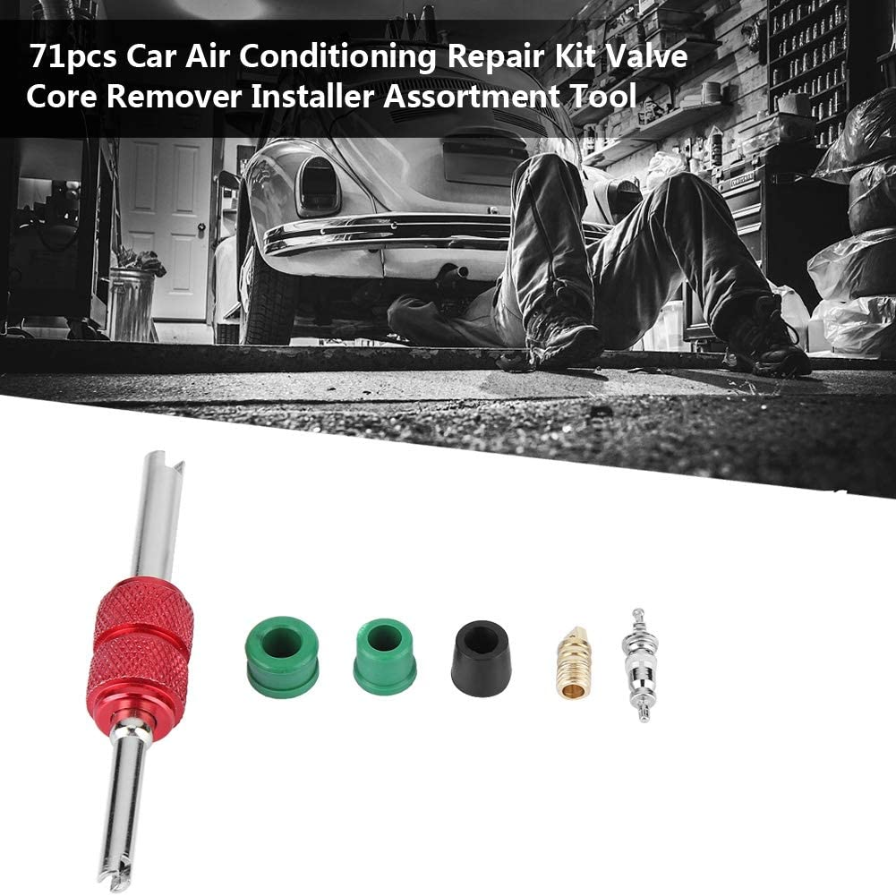 Suuonee A//C Valve 71pcs Car Air Conditioning Repair Kit Valve Core Remover Installer Assortment Tool