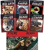 Xtreme Predators
