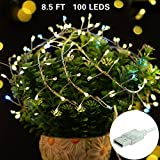 LISOPO String Lights, 8.25Ft /100 LEDs USB Powered Waterproof Copper Wire Fairy Lights Led Starry Lights for Party, Christmas, Patio, Garden, Xmas (Warm White)
