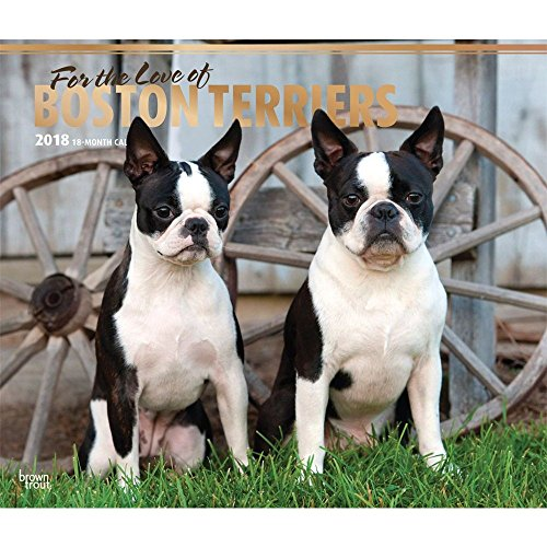 For the Love of Boston Terriers 2018 Deluxe Wall Calendar