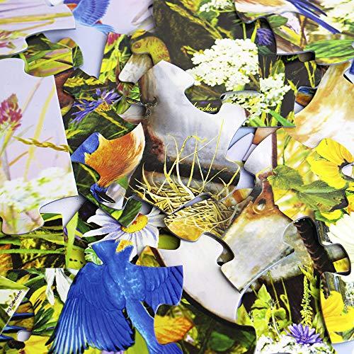 Springbok 36 Piece Jigsaw Puzzle Birds of a Feather
