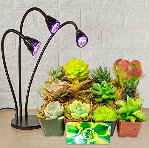 NEW Three Heads Plant Grow Table Light, 360 Degree Flexible and Three on / off Switch for Indoor Plants Greenhouse Office,LED Plant Grow lamp(+Spray Bottle ) by IDB Light (Image #5)