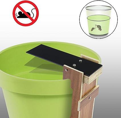 Safetyon Walk Plank Rongeur Trappola Per Topi Auto Reset Pest Control Bait Catcher Trappole Per Topi Amazon It Fai Da Te