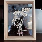 15,2 x 20,3 cm 8.9*12.7cm Amone Cadre en verre double face pour photo et /échantillon