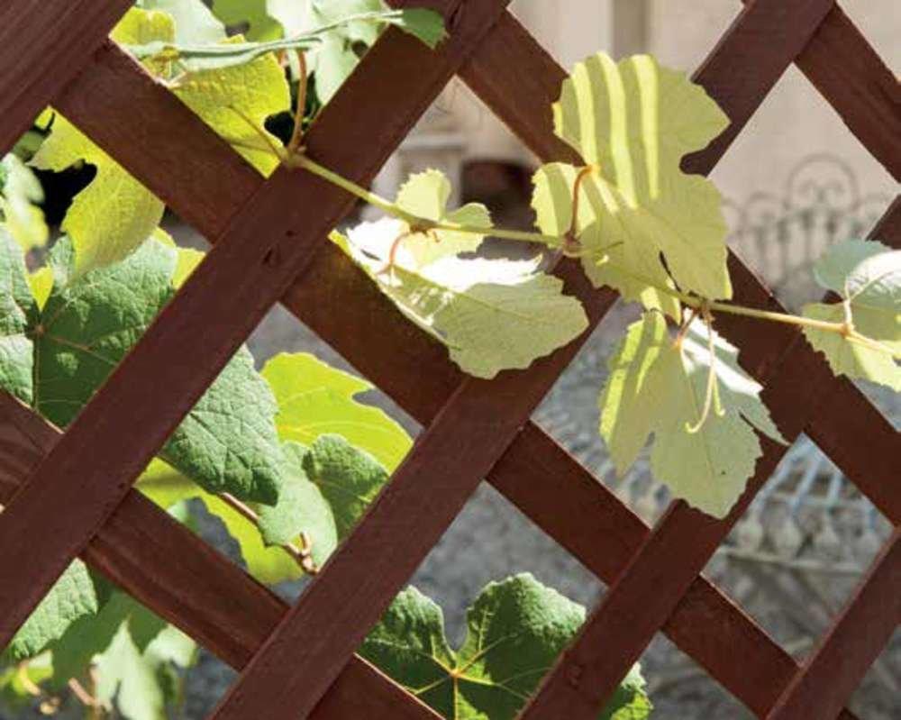 Steccato Estensibile Giardino : Verdelook griglia flexy in legno estensibile fino a cm e alta