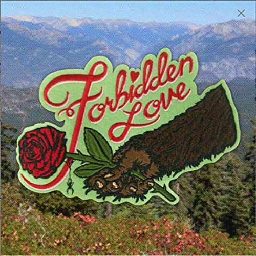Forbidden Love Chenille BACK PATCH Sasquatch Bigfoot Rose Spider Web Beauty and the Beast Romeo and - Rose Web