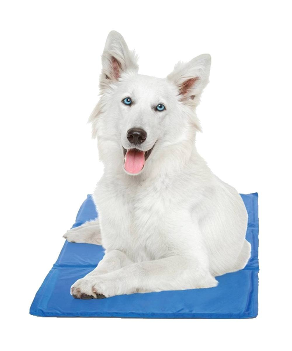 36 x 20 Hugs Pet Products Chillz Pad Comfort Cooling Gel Pet Pad Large