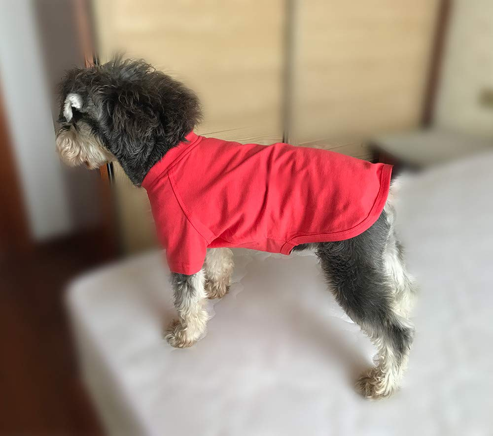 Pet Supplies Longlongpet 2019 Blank Dog T Shirt Basic Tee Shirts For