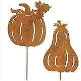 SIDCO 2er Set Gartenstecker Kürbis Rostoptik Halloween Dekoration Herbst Garten Deko