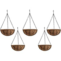 Divine Tree Small Balcony Hanging Flower Basket Planter with Cocopeat Liners Metal Iron Chain for Hanging Pot Flowers Plants