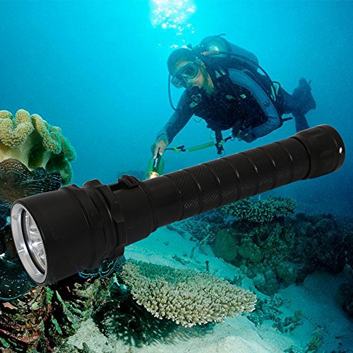 Underwater Led Lights For Diving in Florida - 8