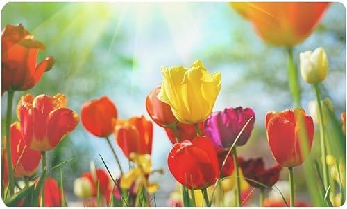 INTERESTPRINT Beautiful Tulip Spring Flowers Doormat Anti-Slip Entrance Mat Floor Rug Indoor Outdoor Door Mats Home Decor, Rubber Backing Large 30 L x 18 W