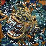 Violent Silence/Flesh Volcano