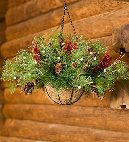 Outdoor Lighted Hanging Baskets - 2