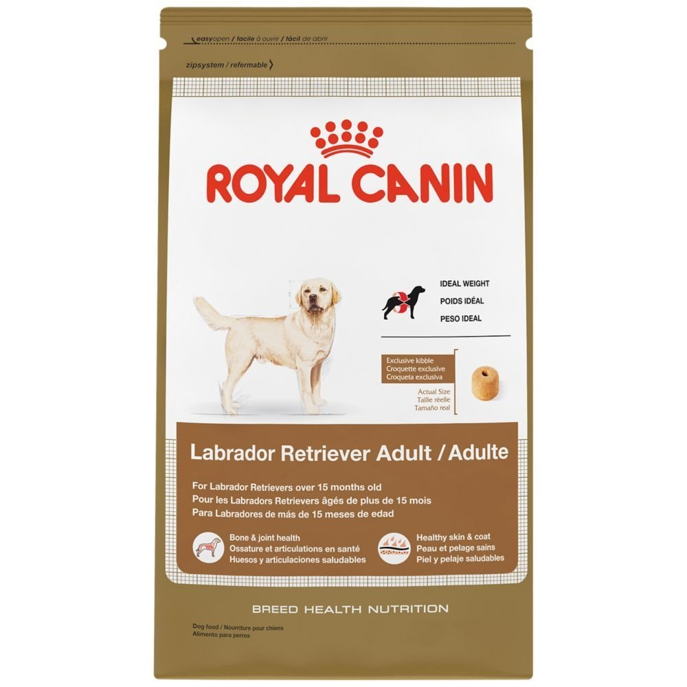 30-Pound, Healthy Skin & Coat Development Dry Dog Food for Labrador Retriever by Royal Canin