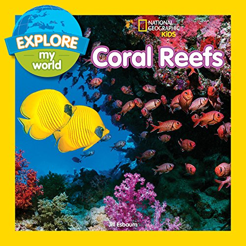 Explore My World: Coral Reefs (Coral Star Polyp)