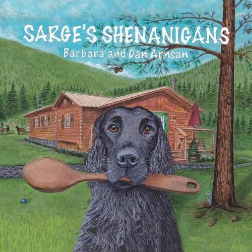 Download Sarge's Shenanigans pdf