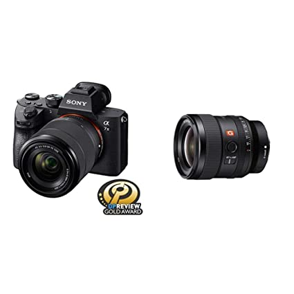 Amazon.com : Sony a7 III Full-frame Mirrorless Interchangeable-Lens ...