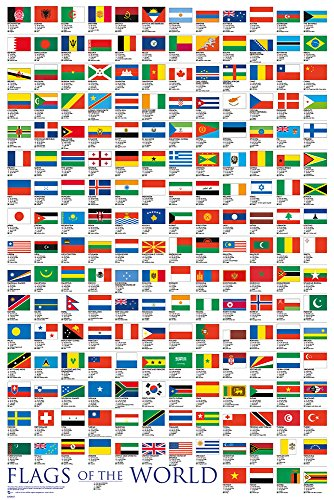 flags of the world poster - 8