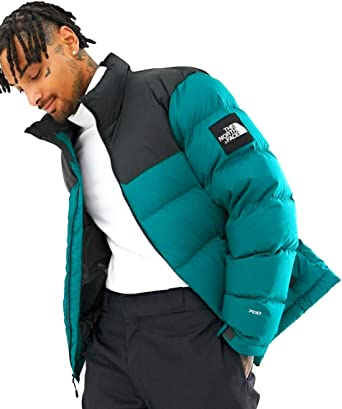 the north face 1992 jacke