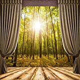 Cheap Baocicco Wooden Windowsill Curtains French Window View Backdrop 5X5ft Cotton Polyester Photography Background Autumn Forest Sunshine Trees Outdoor Landscape Holiday Vacation Leisure Life