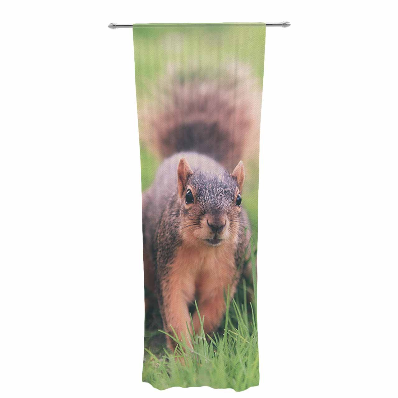 Kess InHouse Angie Turner Squirrel Brown Animals Decorative Set, 30' x 84' Sheer Curtains