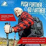 TrailBuddy Lightweight Trekking Poles - 2-pc Pack