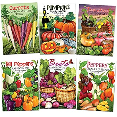 Rainbow Vegetable Seed Assortment (35+ Varieties of Carrots, Peppers, Pumpkins, Tomatoes & Beets!) Non-GMO Seeds by Seed Needs