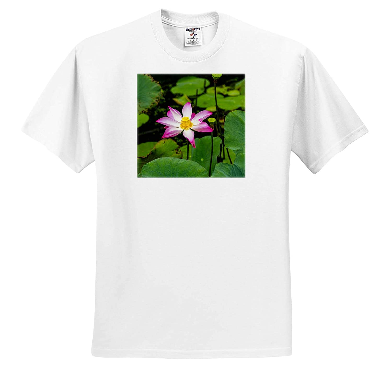 Vietnam Adult T-Shirt XL Lotus Blossom Flower ts/_312886 3dRose Danita Delimont Ving Trang Pagoda Asia Flowers