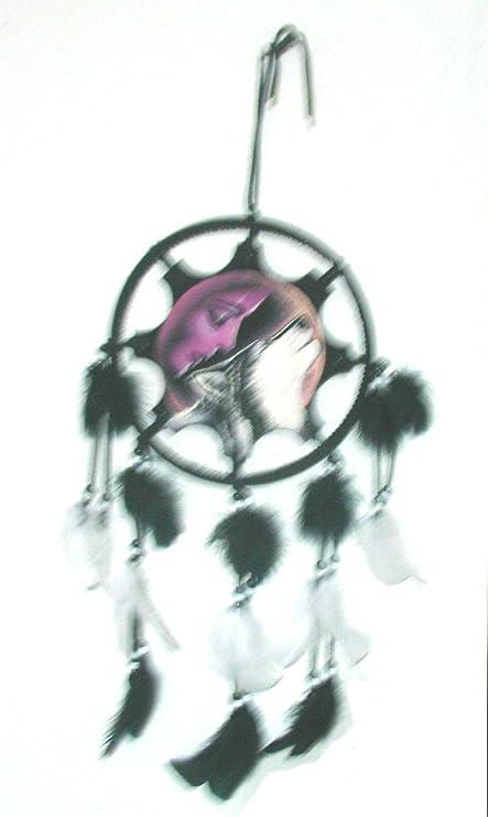 Amazon Native American Maiden Wolf Aztec Dreamcatcher Painting