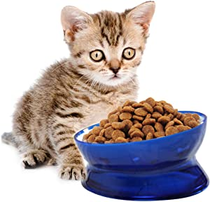 kathson Plastic Raised Cat Food Bowl Pet Feed Bowls Anti Vomiting Tilted Elevated Cats Bowl Protect Pet's Spine for Small Short-Nosed Dog