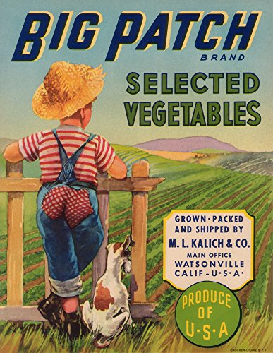 - Big Patch Vegetable - Vintage Crate Label (9x12 Art Print, Wall Decor Travel Poster)