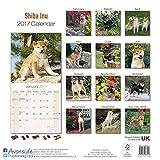 Shiba Inu Calendar 2017 - Dog Breed Calendars - 2016 - 2017 wall calendars - 16 Month by Avonside