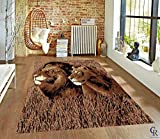 "CHAMPION RUGS LION AND LIONESS FACE PAIR AFRICAN AFRICA WILDLIFE SAFARI AREA RUG (5' 3"" X 7' 5"")"