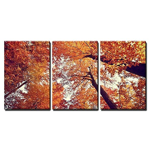 Beautiful Autumn Fall Forest Scene x3 Panels