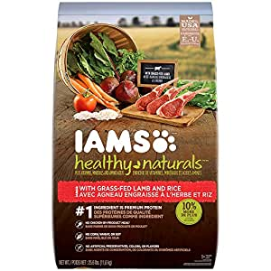 Amazon.com : IAMS HEALTHY NATURALS Adult With Lamb and
