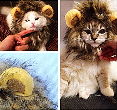 T2C Lion Mane Wig for Dog Cat Halloween Dress up with Ears Pet Costume cosplay (80s Guys Costume)