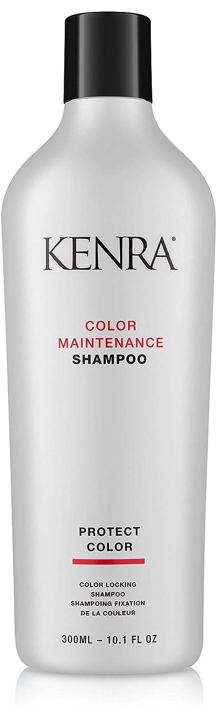 Kenra Color Maintenance Shampoo/Conditioner