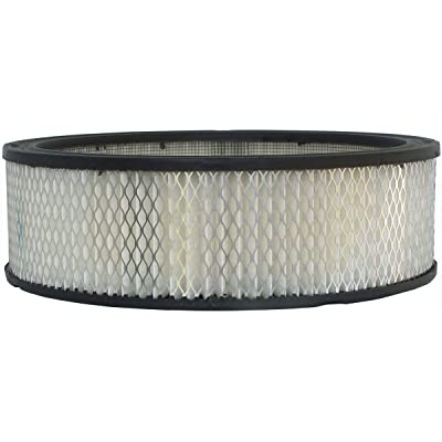 Luber-finer AF96 Heavy Duty Air Filter: Automotive