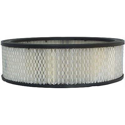 Luber-finer AF96 Heavy Duty Air Filter: Automotive