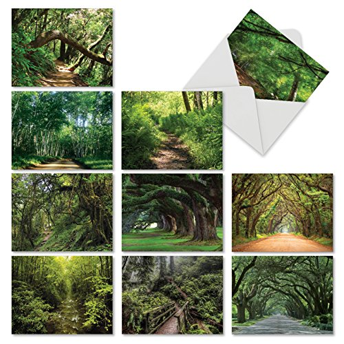 (10 Nature Landscape Note Cards with Envelopes Small 4 x 5.12 inch - Beautiful Assortment Blank Cards 'Nature Trails' - Peaceful Scenery, Tree Hiking Paths - All Occasion Greeting Notecards M6467OCBsl)