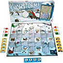 Family Pastimes Snowstorm - A Co-operative Game