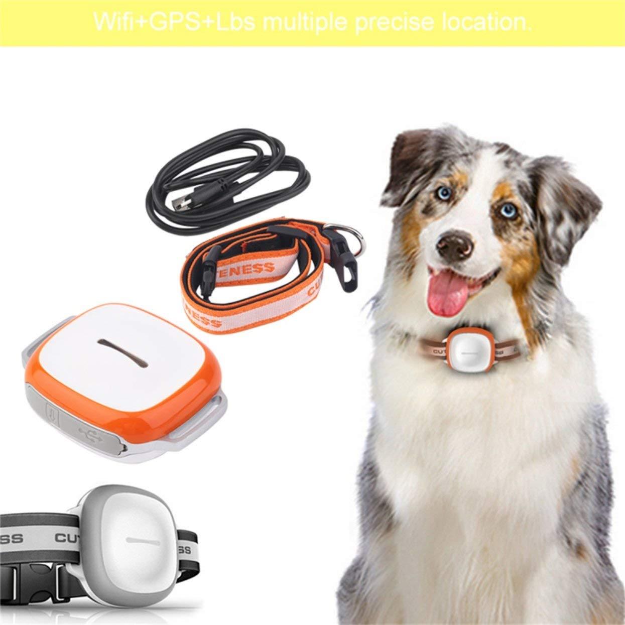 GT011 Inteligente Buscador de Mascotas GPS Inalámbrico ...