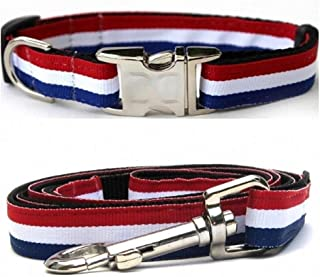 "product image for Diva-Dog 'Patriotic Pooch' Custom Small Dog 5/8"" Wide Dog Collar with Plain or Engraved Buckle, Matching Leash Available - Teacup, XS/S"